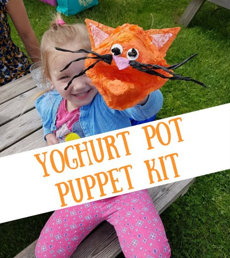 Yoghurt Pot Puppet Kit