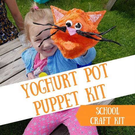 Yoghurt Pot Craft Kit for Schools